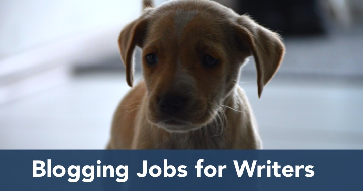 Blogging Jobs for Writers